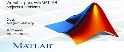 order matlab project